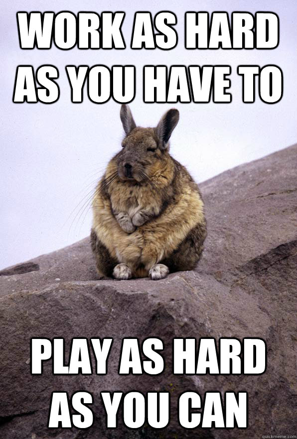 work as hard as you have to play as hard as you can - Wise Wondering Viscacha