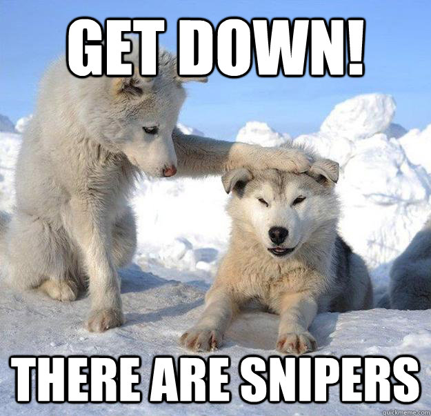 get down there are snipers - Caring Husky