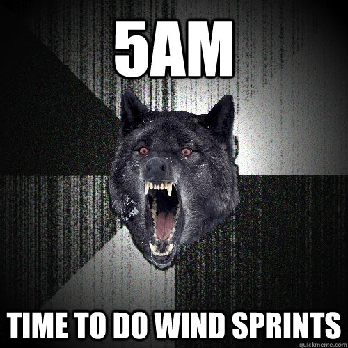 5am time to do wind sprints - Insanity Wolf