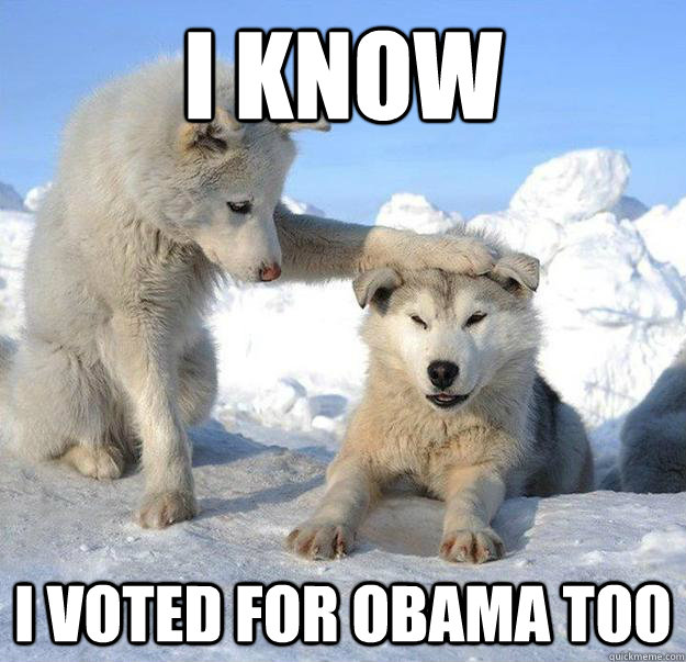 i know i voted for obama too - Caring Husky