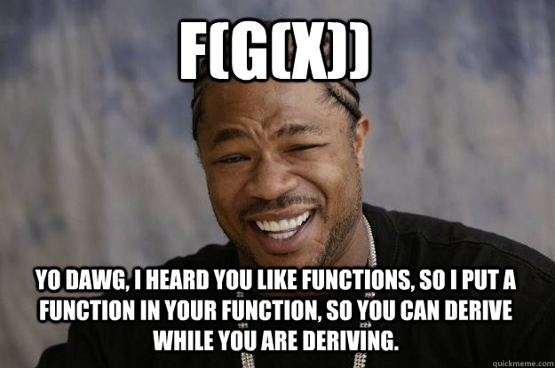 fgx yo dawg i heard you like functions so i put a func - Xzibit meme
