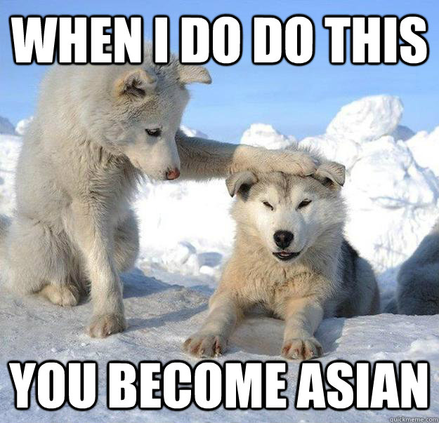 when i do do this you become asian - Caring Husky