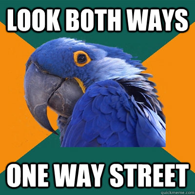 look both ways one way street - Paranoid Parrot
