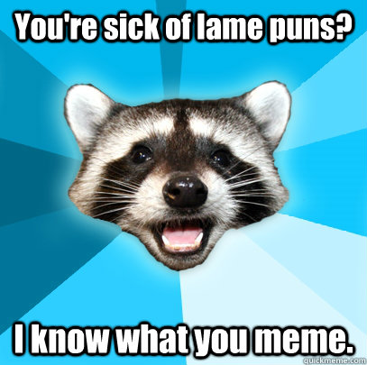 youre sick of lame puns i know what you meme - Lame Pun Coon