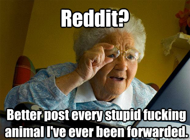 reddit better post every stupid fucking animal ive ever be - Grandma finds the Internet