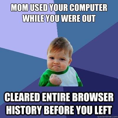 mom used your computer while you were out cleared entire bro - Success Kid