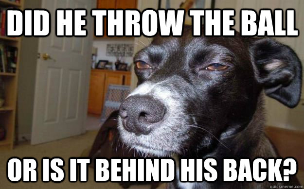 did he throw the ball or is it behind his back - Skeptical Mutt