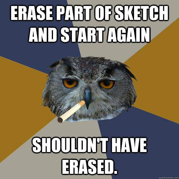 erase part of sketch and start again shouldnt have erased - Art Student Owl