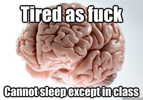 tired as fuck cannot sleep except in class  - Scumbag Brain