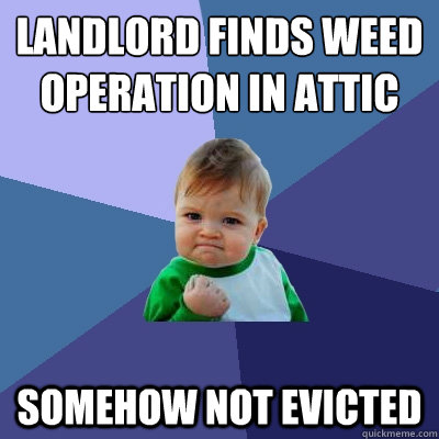 landlord finds weed operation in attic somehow not evicted - Success Kid