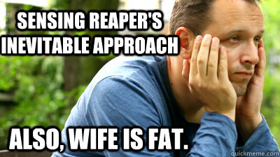 sensing reapers inevitable approach also wife is fat - middle aged meme