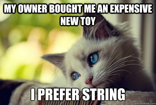 my owner bought me an expensive new toy i prefer string - First World Cat Problems