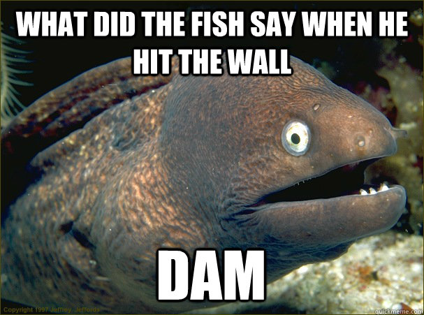 what did the fish say when he hit the wall dam - Bad Joke Eel