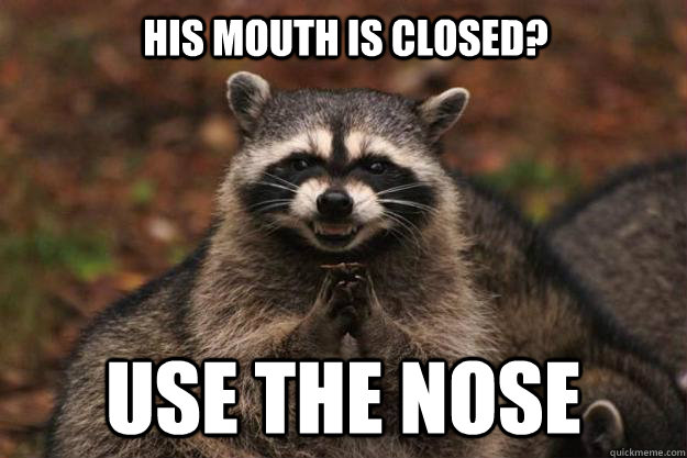 his mouth is closed use the nose - Evil Plotting Raccoon
