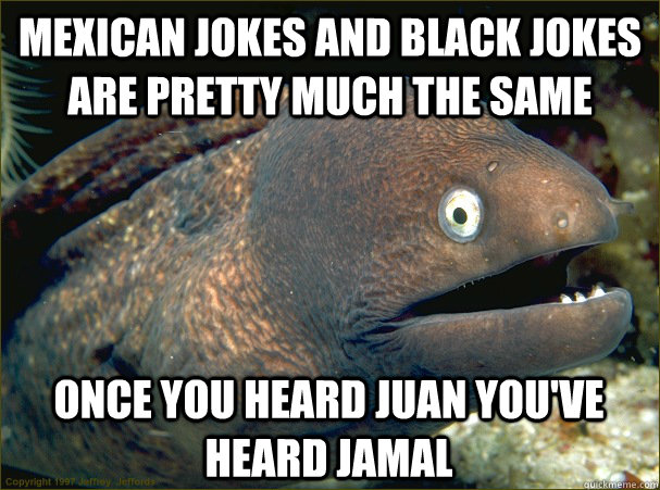 mexican jokes and black jokes are pretty much the same once  - Bad Joke Eel
