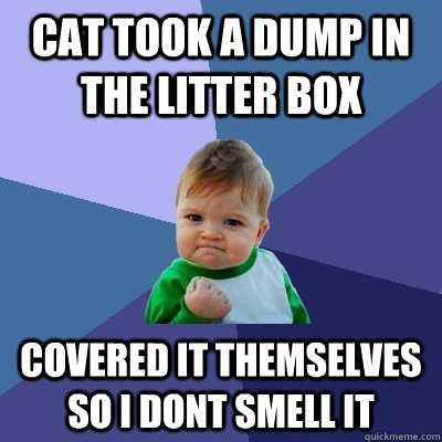 cat took a dump in the litter box covered it themselves so i - Success Kid