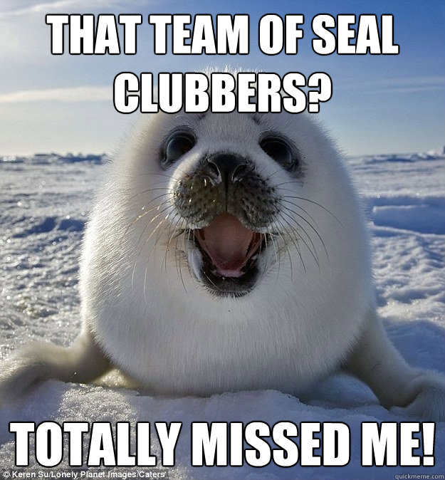 that team of seal clubbers totally missed me - Easily Pleased Seal