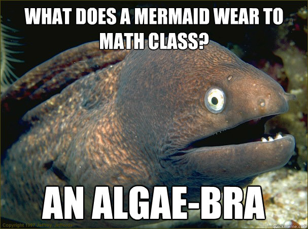 what does a mermaid wear to math class an algaebra - Bad Joke Eel