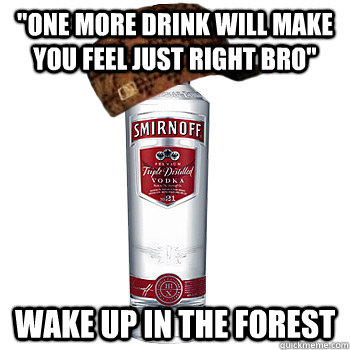 one more drink will make you feel just right bro wake up i - Scumbag Steve
