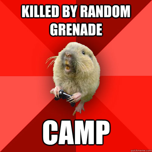 killed by random grenade camp - Gaming Gopher