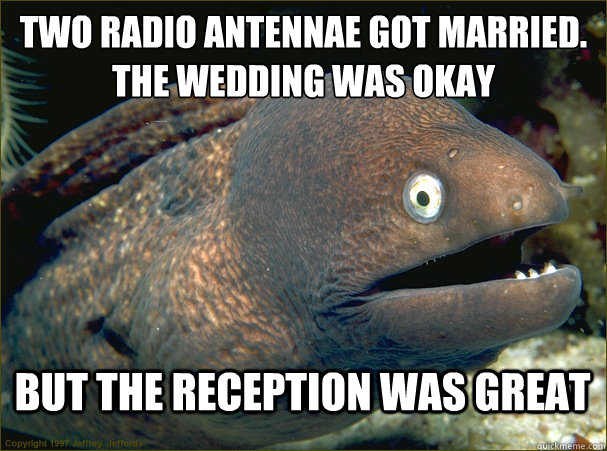 two radio antennae got married the wedding was okay but the - Bad Joke Eel