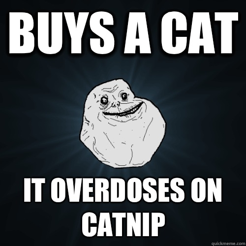 buys a cat  - Forever Alone