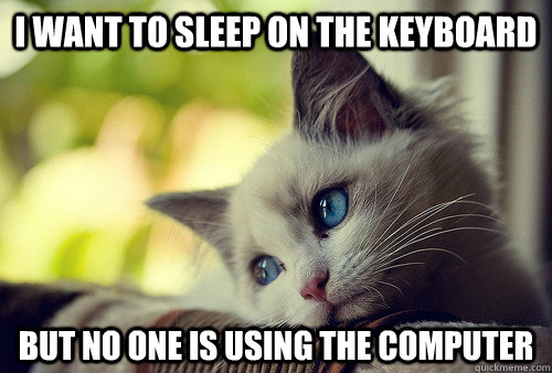 i want to sleep on the keyboard but no one is using the comp - First World Problems Cat