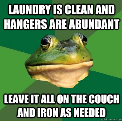 laundry is clean and hangers are abundant leave it all on th - Foul Bachelor Frog