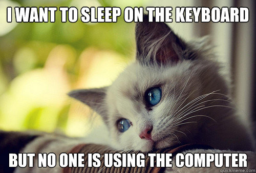i want to sleep on the keyboard but no one is using the comp - First World Cat Problems