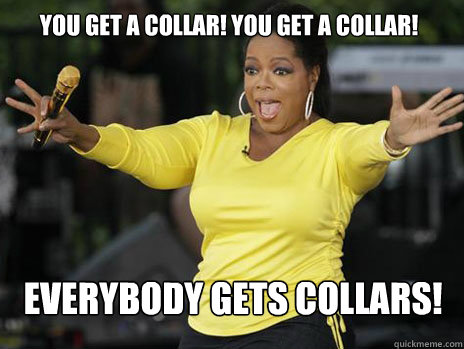 you get a collar you get a collar everybody gets collars - Oprah Loves Ham
