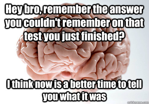 hey bro remember the answer you couldnt remember on that t - Scumbag Brain