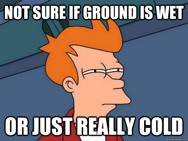 not sure if ground is wet or just really cold - Futurama Fry