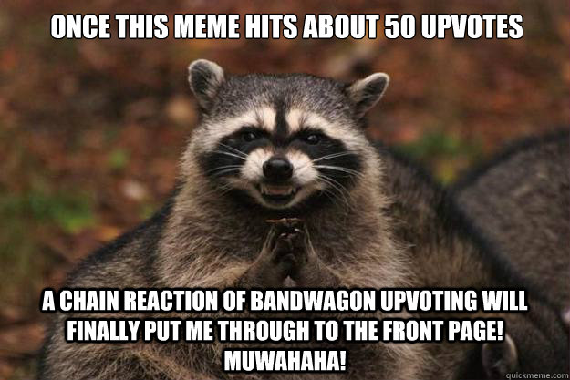 once this meme hits about 50 upvotes a chain reaction of ban - Evil Plotting Raccoon
