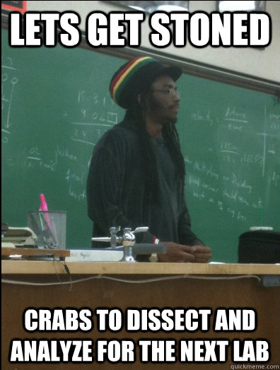 lets get stoned crabs to dissect and analyze for the next la - Rasta Science Teacher