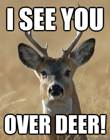 deer hunting memes - photo #40