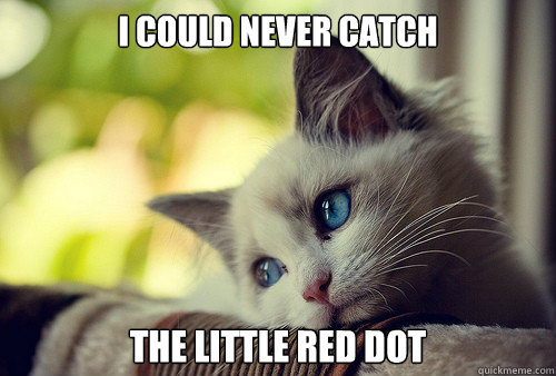 i could never catch the little red dot - First World Cat Problems