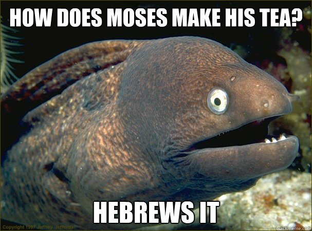 how does moses make his tea hebrews it - Bad Joke Eel