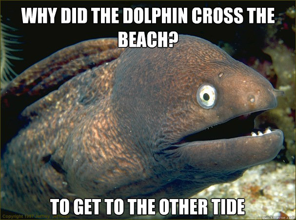 why did the dolphin cross the beach to get to the other tid - Bad Joke Eel