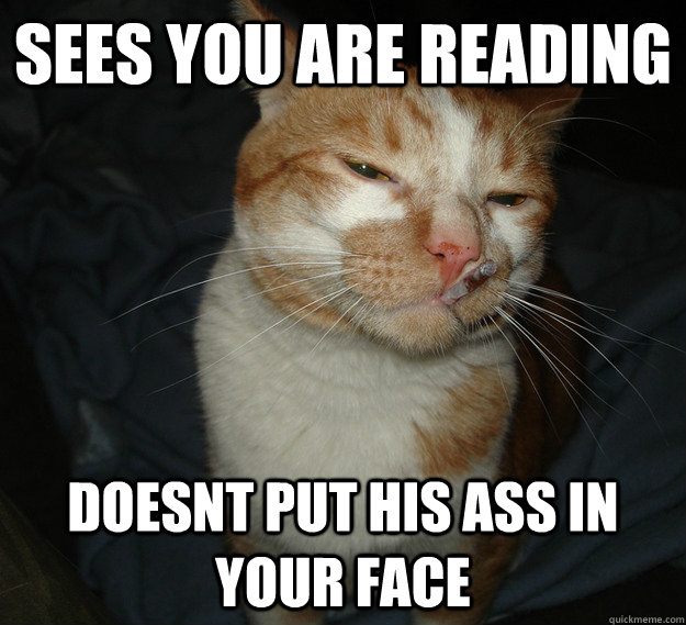 sees you are reading doesnt put his ass in your face - Cool Cat Craig