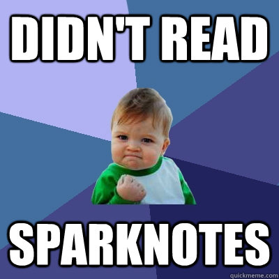 didnt read sparknotes - Success Kid