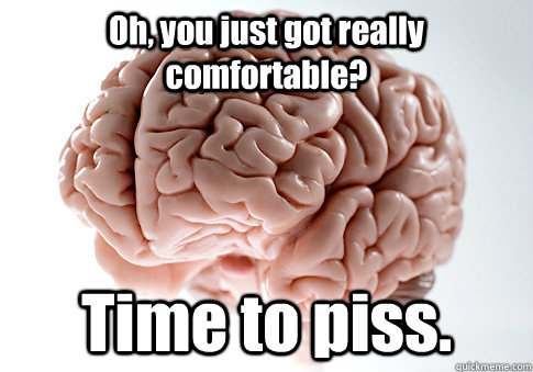 oh you just got really comfortable time to piss - Scumbag Brain