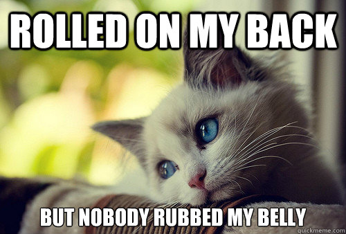 rolled on my back but nobody rubbed my belly - First World Cat Problems