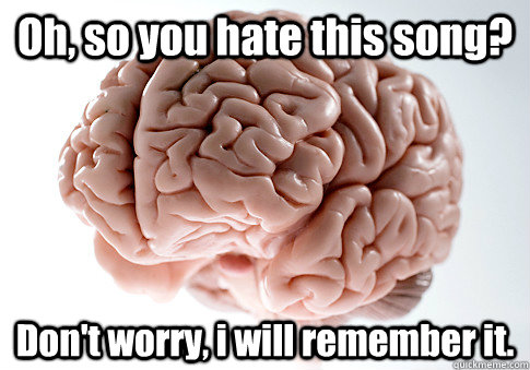 oh so you hate this song dont worry i will remember it - Scumbag Brain