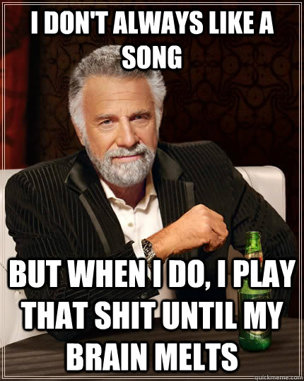 i dont always like a song but when i do i play that shit u - The Most Interesting Man In The World