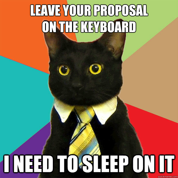 leave your proposal on the keyboard i need to sleep on it - Business Cat