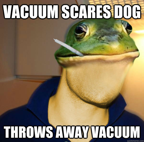 vacuum scares dog throws away vacuum - Good Guy Foul Bachelor Frog