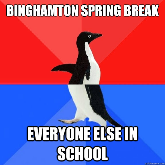 binghamton spring break everyone else in school - Socially Awksome Penguin