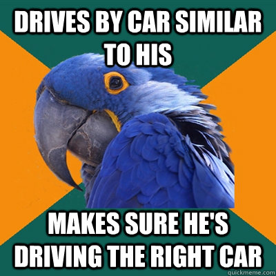 drives by car similar to his makes sure hes driving the rig - Paranoid Parrot