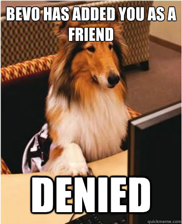 bevo has added you as a friend denied - Internet Reveille