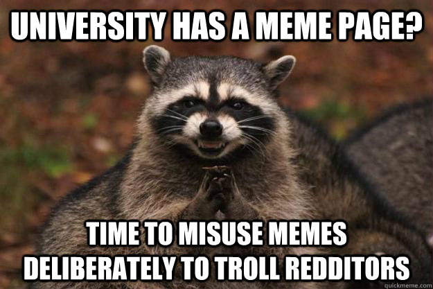 university has a meme page time to misuse memes deliberatel - Evil Plotting Raccoon